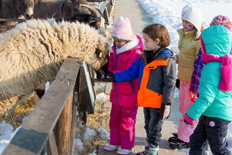 Animale și grup de copii iarna