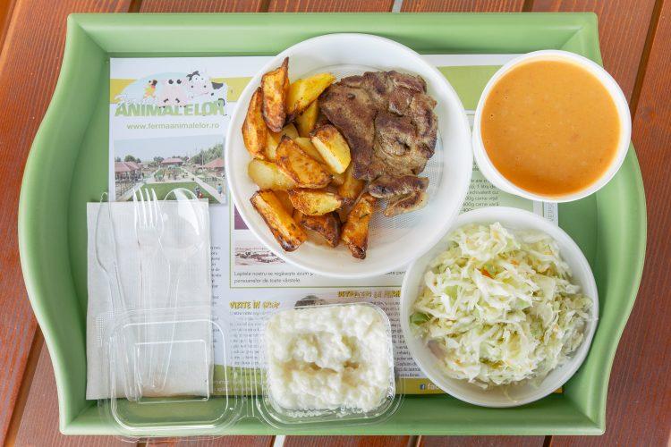 Tavă cu trei feluri de mâncare