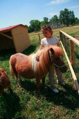 Fetiță și ponei