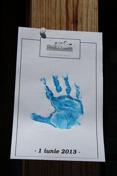 Palmă albastră